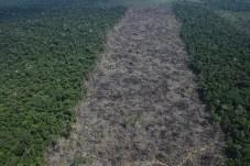 Conforme descreve Juan Doblas, são áreas devastadas em dimensões industriais onde não é registrado nenhum uso da terra de fato - Créditos: Foto: Juan Doblas
