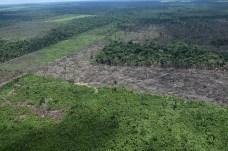 """""""São áreas griladas, as pessoas não pagam nada pela terra mas afirmam que é deles"""", explica o pesquisador - Créditos: Foto: Juan Doblas"""