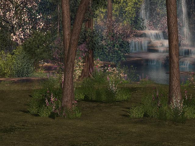 El Jardín mágico:  Meditación
