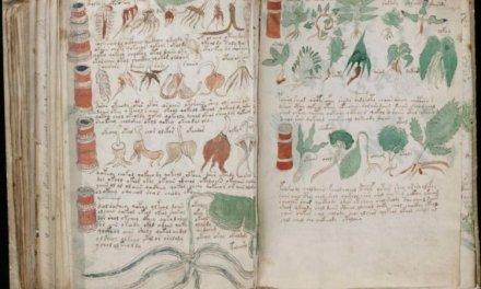El manuscrito Voynich, desafío al tiempo y al conocimiento.