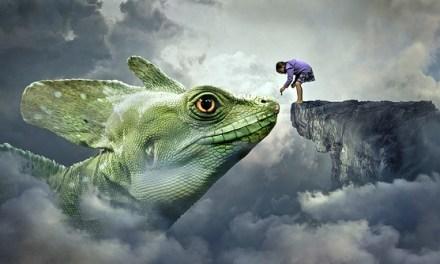 Entre lunas y dragones