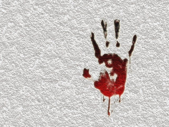 Asesino virtual