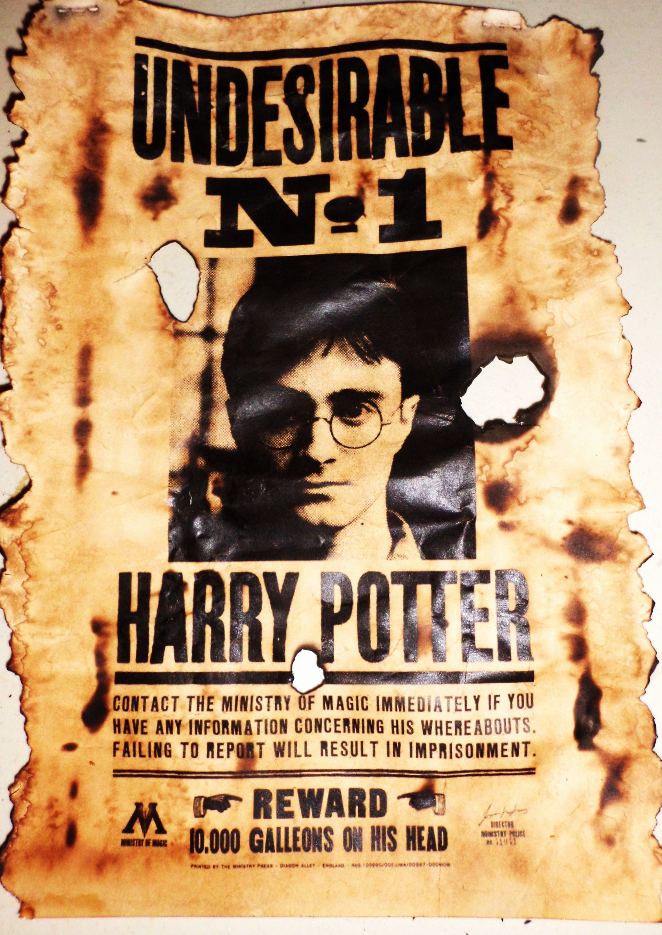 40 Harry Potter Wanted Poster