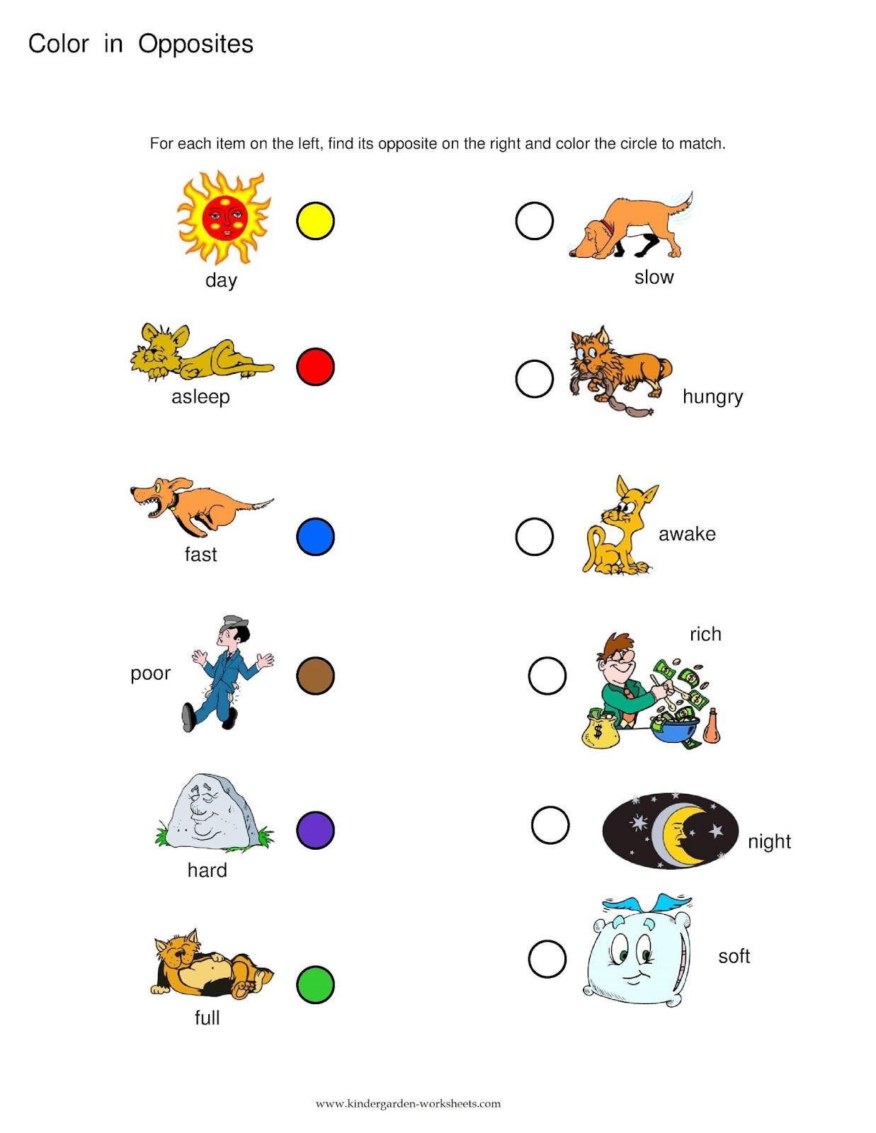 20 Opposites Worksheet Kindergarten
