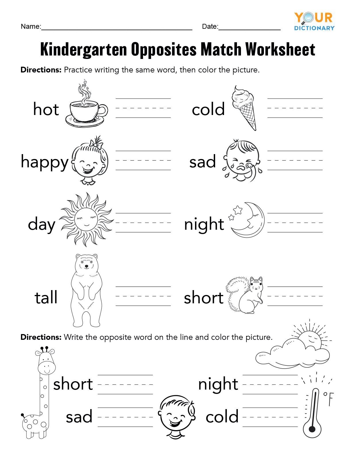 20 Preschool Opposite Worksheet