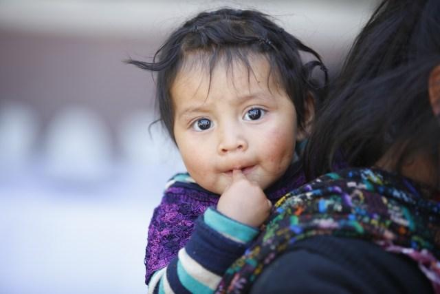 Quetzaltenango fortalece la Gobernanza en Seguridad Alimentaria y Nutricional