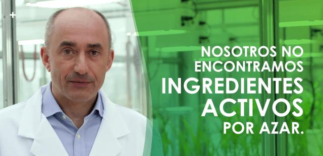 ¿Cómo se protege la salud de una planta de manera efectiva?
