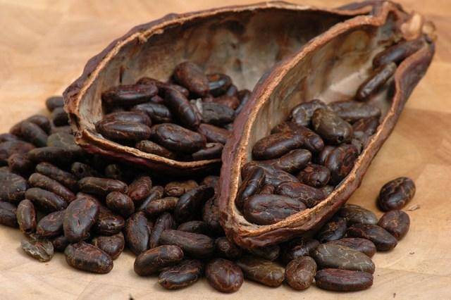 Cinco muestras de cacao fino guatemalteco participarán en el Cocoa of Excellence & International Cocoa Awards 2021
