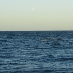 Puerto Madryn - 98