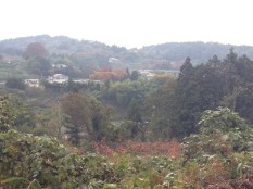 Looking back towards my town from atop one of the hills.