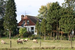 woonboerderij met schapen