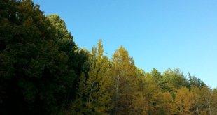 outono na sicília