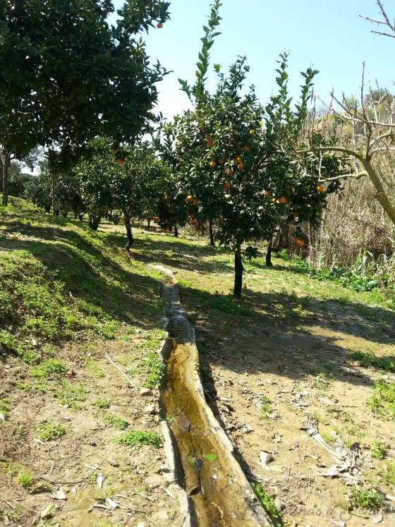 Canais de irrigação