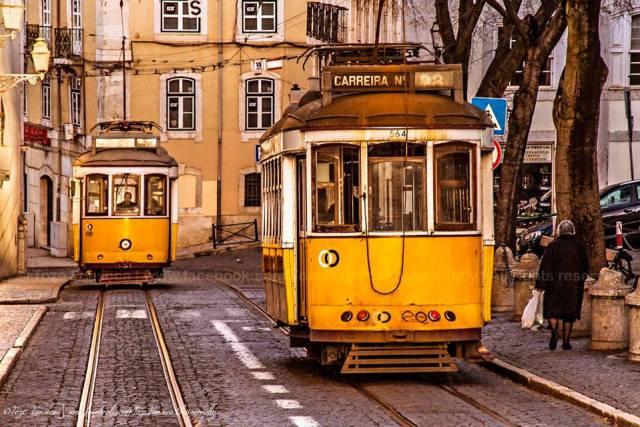 Eléctrico, Lisboa