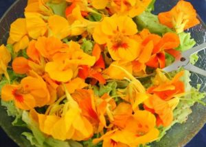 flor de comer