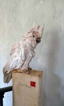 jurgen-lingl-rebetez-parrot-wood