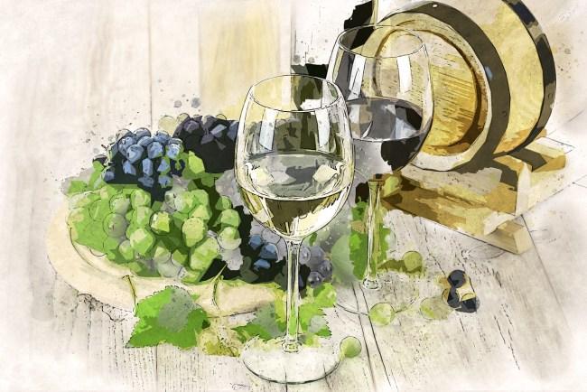 vinhos brancos e tintos