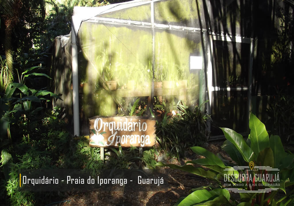 Orquidário Praia de Iporanga Guarujá