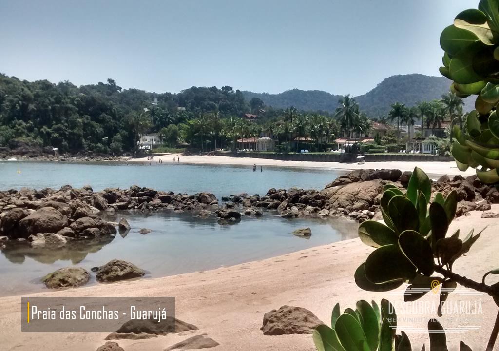 Foco Praia de conchas no Guarujá