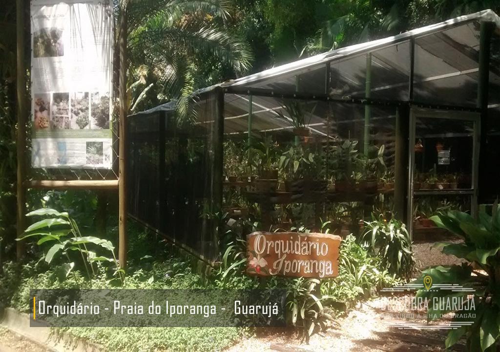 Orquidario Iporanga Praia de Conchas Guarujá