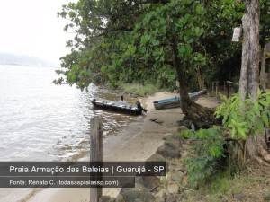 Praia Armacao das Baleias Guarujá - FT Renato C. - Todasaspraiassp