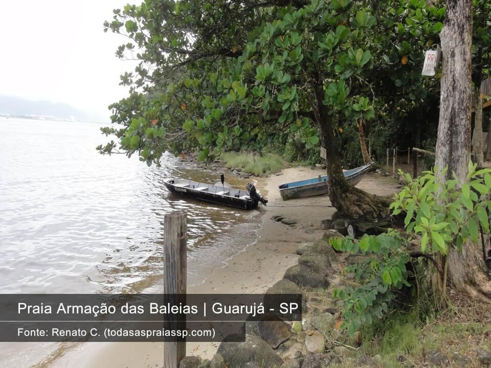 Praia Armação das Baleias Guarujá