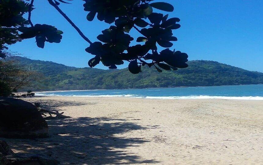 Praia do Tenório em Ubatuba