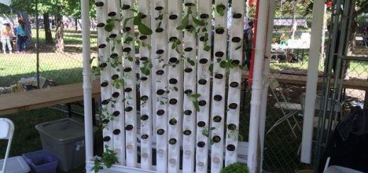 jardin - Un jardin robotizado