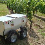VineRobot, un robot en la viña