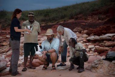 paleonto-300x200 Drones que ayudan a buscar fósiles de dinosaurios