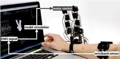 roboticamano4 ¿Te gustaría tener una mano extra robótica? El MIT ya la ha diseñado