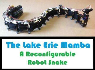robot serpìente 608x450 - Construye un robot serpiente muy bailón con Arduino