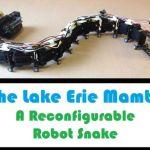robot-serpìente-150x150 Crea una réplica de Terminator con Arduino