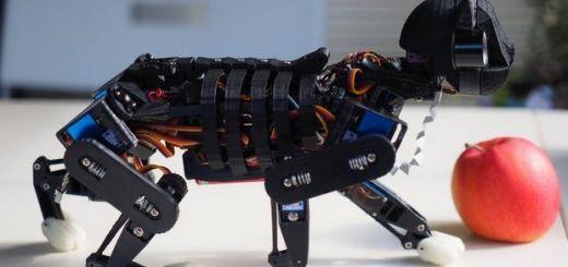 gato robot - Opencat, un gato robot para enseñar a los niños robótica