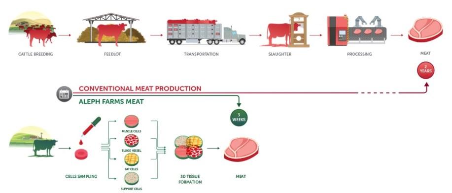 desarrollo carne impresa en 3D - La nueva empresa de tecnología alimentaria Aleph Farms bioprime la carne en 3D en el espacio