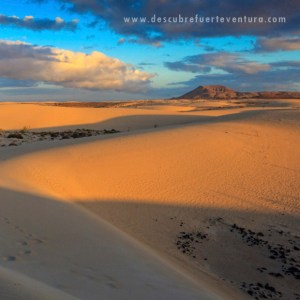 Conoce Fuerteventura