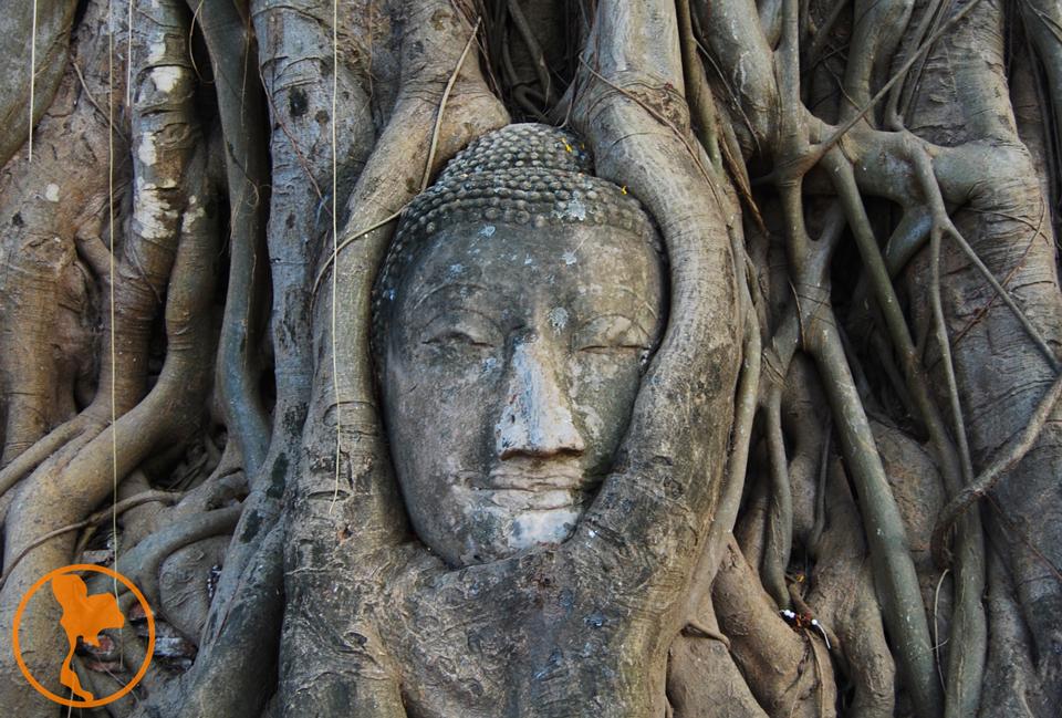 Wat Mahathat - Parque Histórico de Ayutthaya - Descubre Tailandia