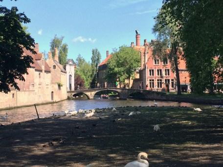 Brujas, Bélgica | Descubriendo el mundo con Anna29