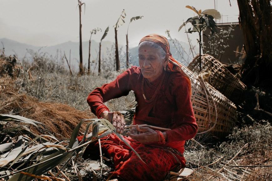 Señora mayor nepalí limipando hierbas en el Sarangkot, Nepal