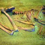 — Enterramiento neolítico en de cúbito lateral. (Todas las imágenes del artículo son de Esther Núñez)