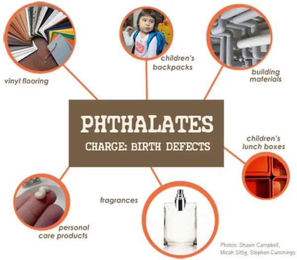 Phthalates are commonly found in: