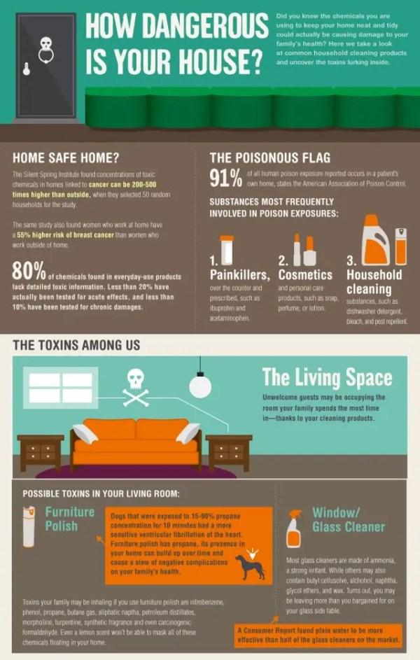 infographic of toxins in your house living space