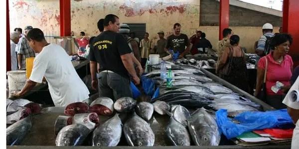 fish-market image