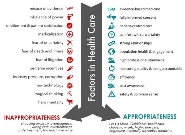 List of factors that contribute to Inappropriate Health Care infographic