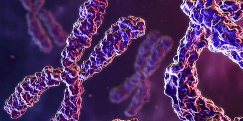 image of genetic-pattern