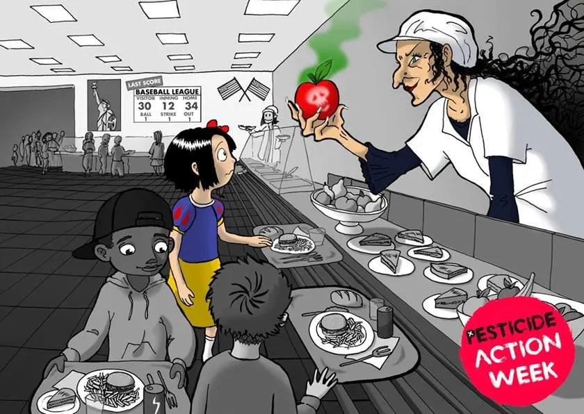 No pesticide in my school meals image