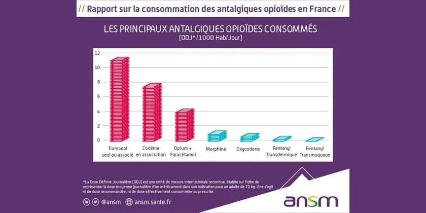 État des lieux de la consommation des antalgiques opioïdes et leurs usages problématiques
