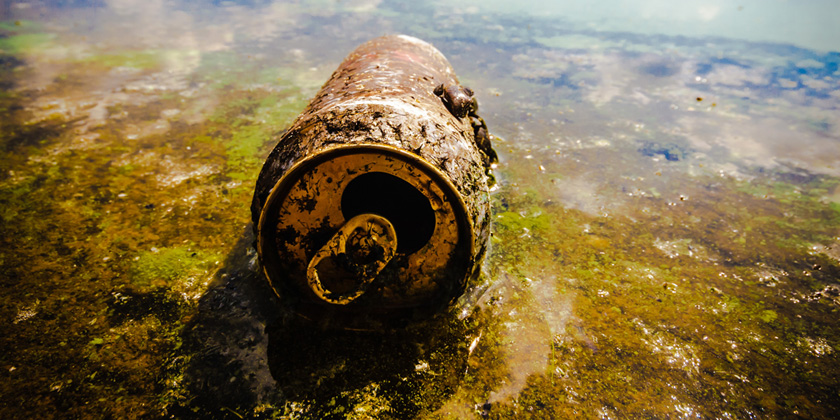 Environmental toxicants: hidden players on the reproductive stage
