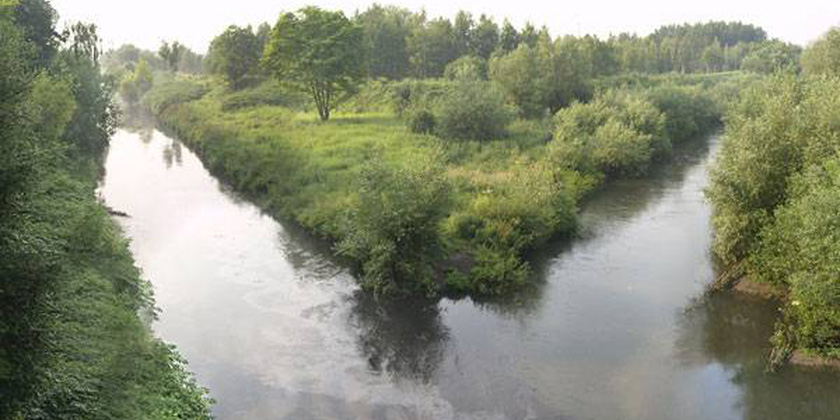 Assessment of the biodegradability of selected sulfa drugs in two polluted rivers in Poland