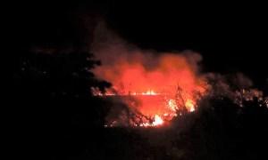incendio forestal cordillera maribios